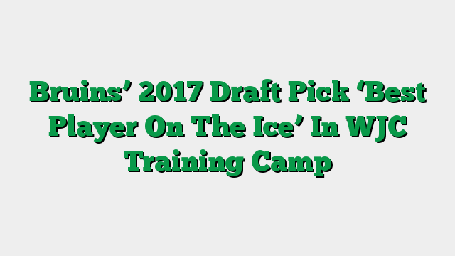 Bruins' 2017 Draft Pick 'Best Player On The Ice' In WJC Training Camp